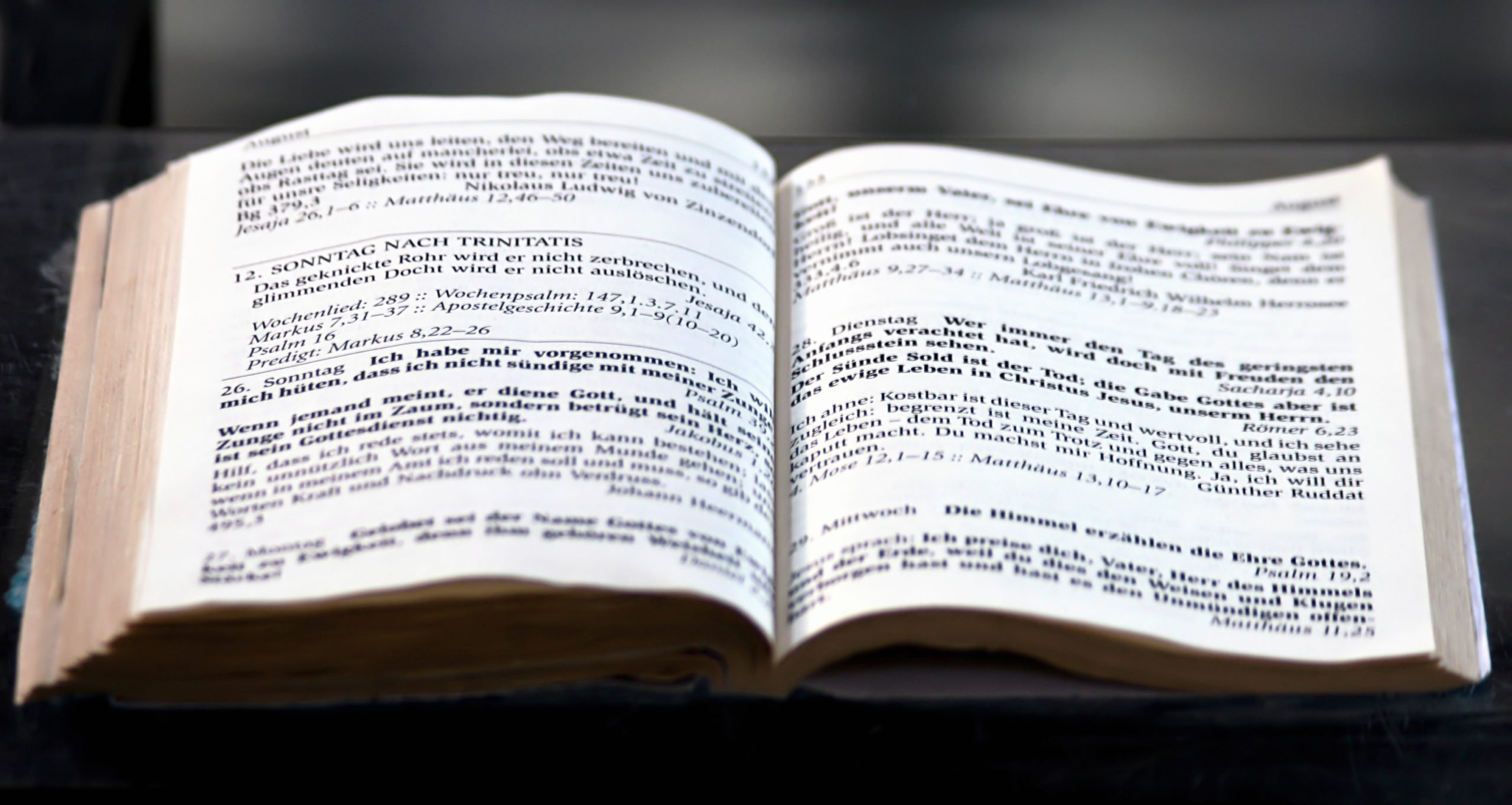 Evaluating the Book of Mormon