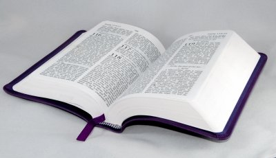 What Bible Should I Read?